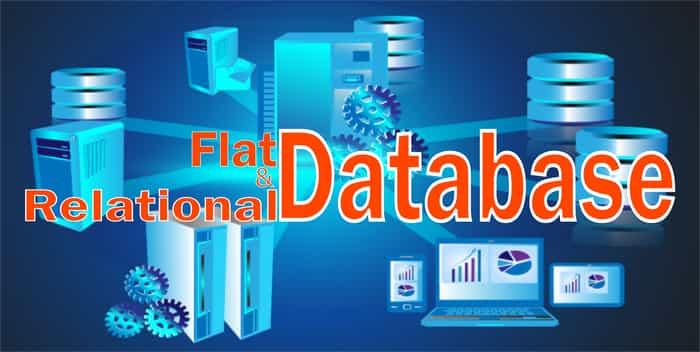 Flat & Relational Database