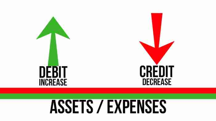 Assets Expenses