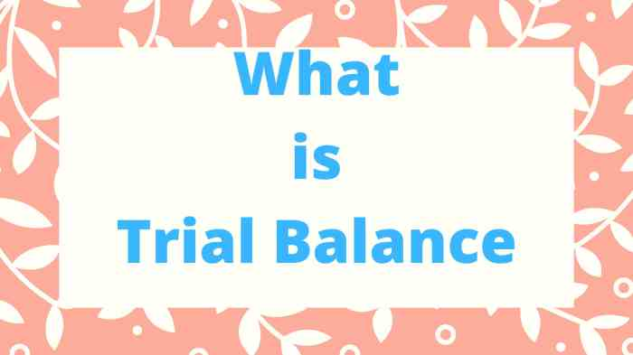 What is Trial Balance