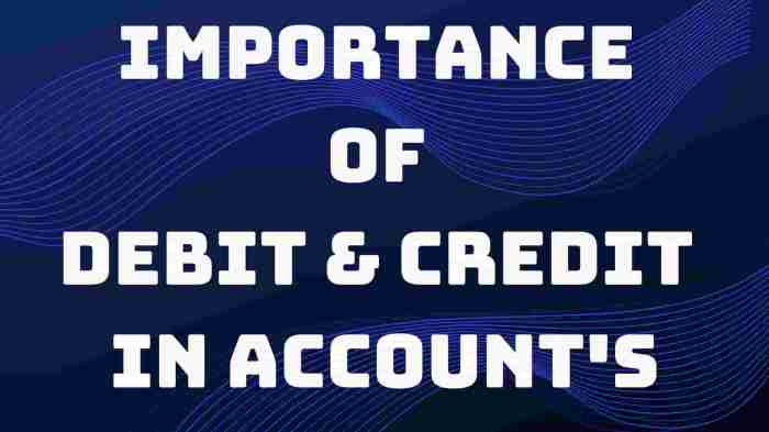 Importance of Debit and Credit in accounts