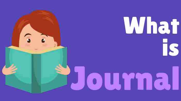 What is Journal