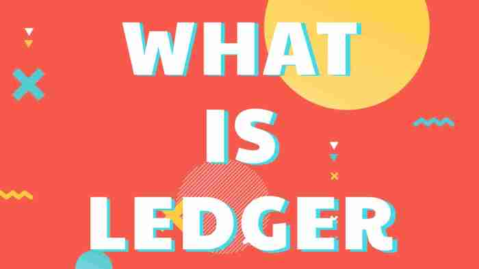What is Ledger
