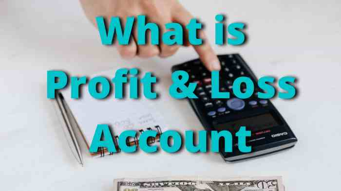 What is Profit & Loss Account